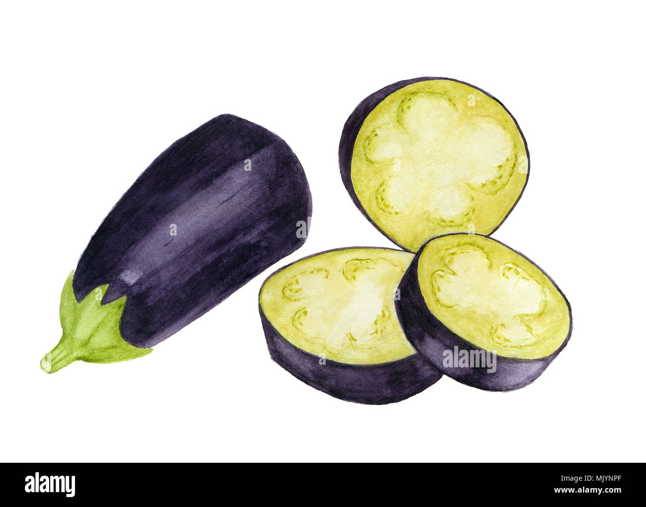 Suite une nouvelle main d'aubergines, d'aquarelle. illustration pour la conception de l'alimentation. Photo Stock