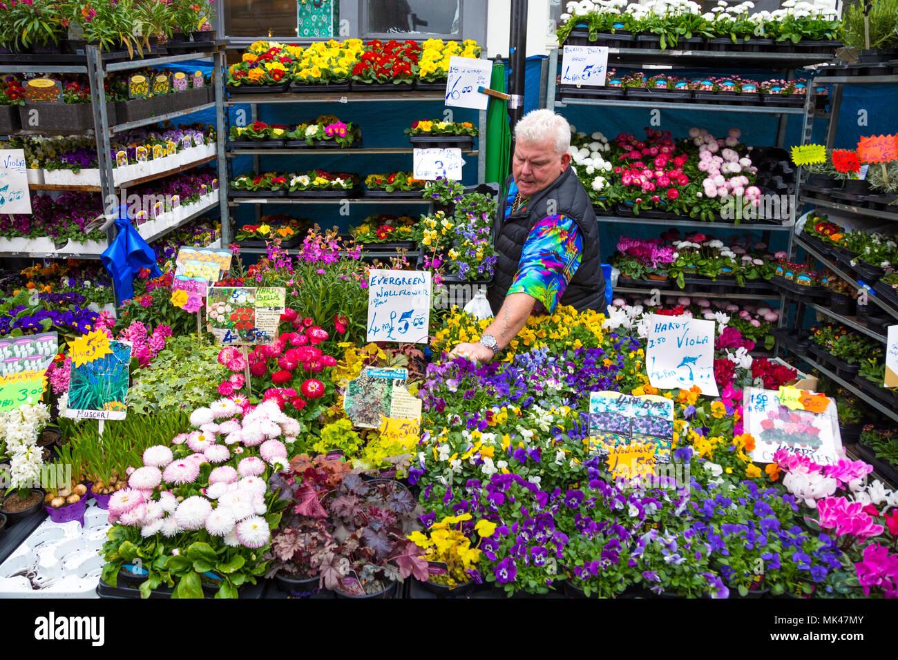 Marchande de fleurs à son échoppe dans la Columbia Road Flower Market, London, UK Photo Stock