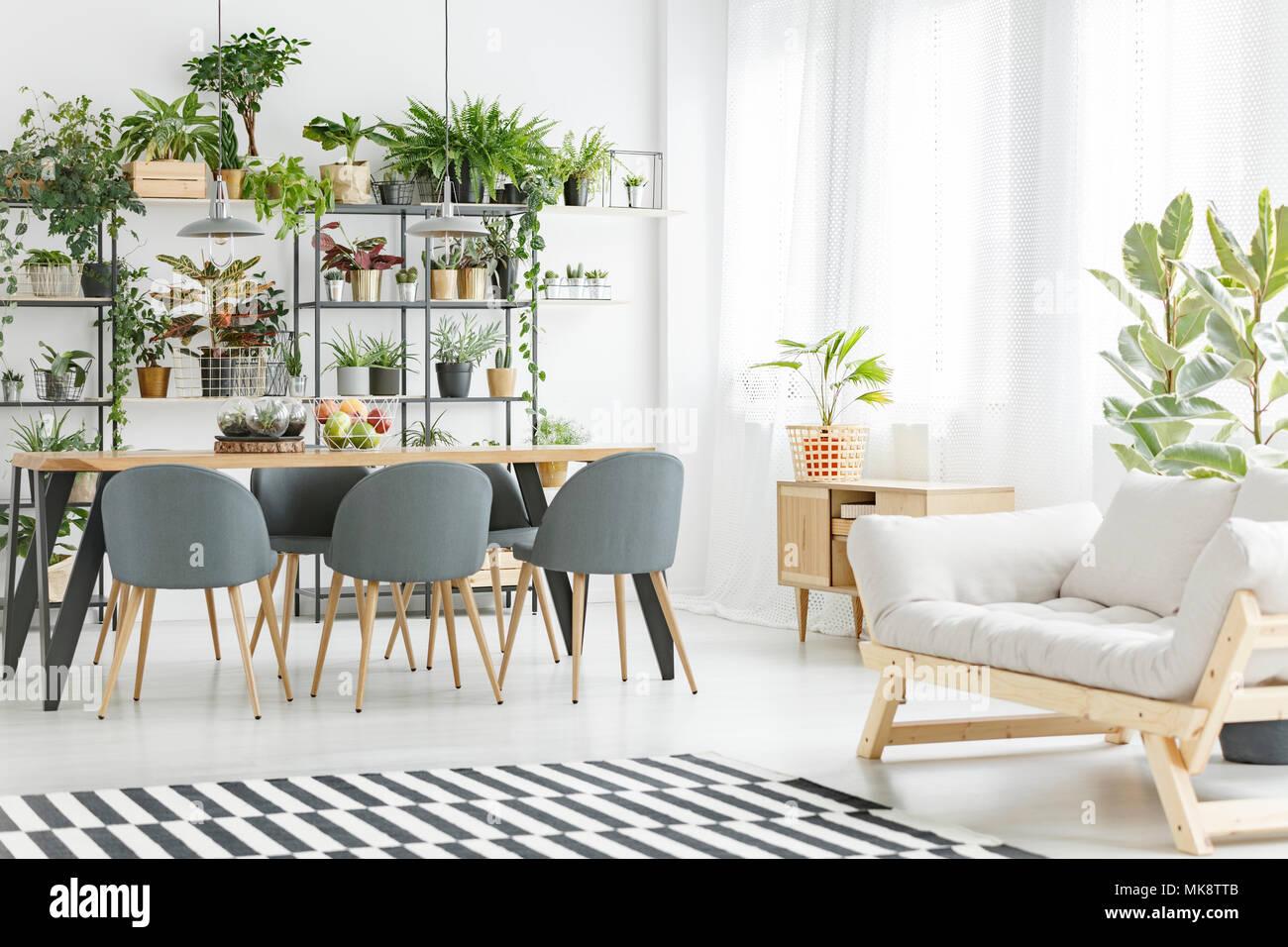 Canapé Beige Gris à Côté De Chaises Table De Salle à Manger En Open Space  Naturel Avec Des Plantes Du0027intérieur