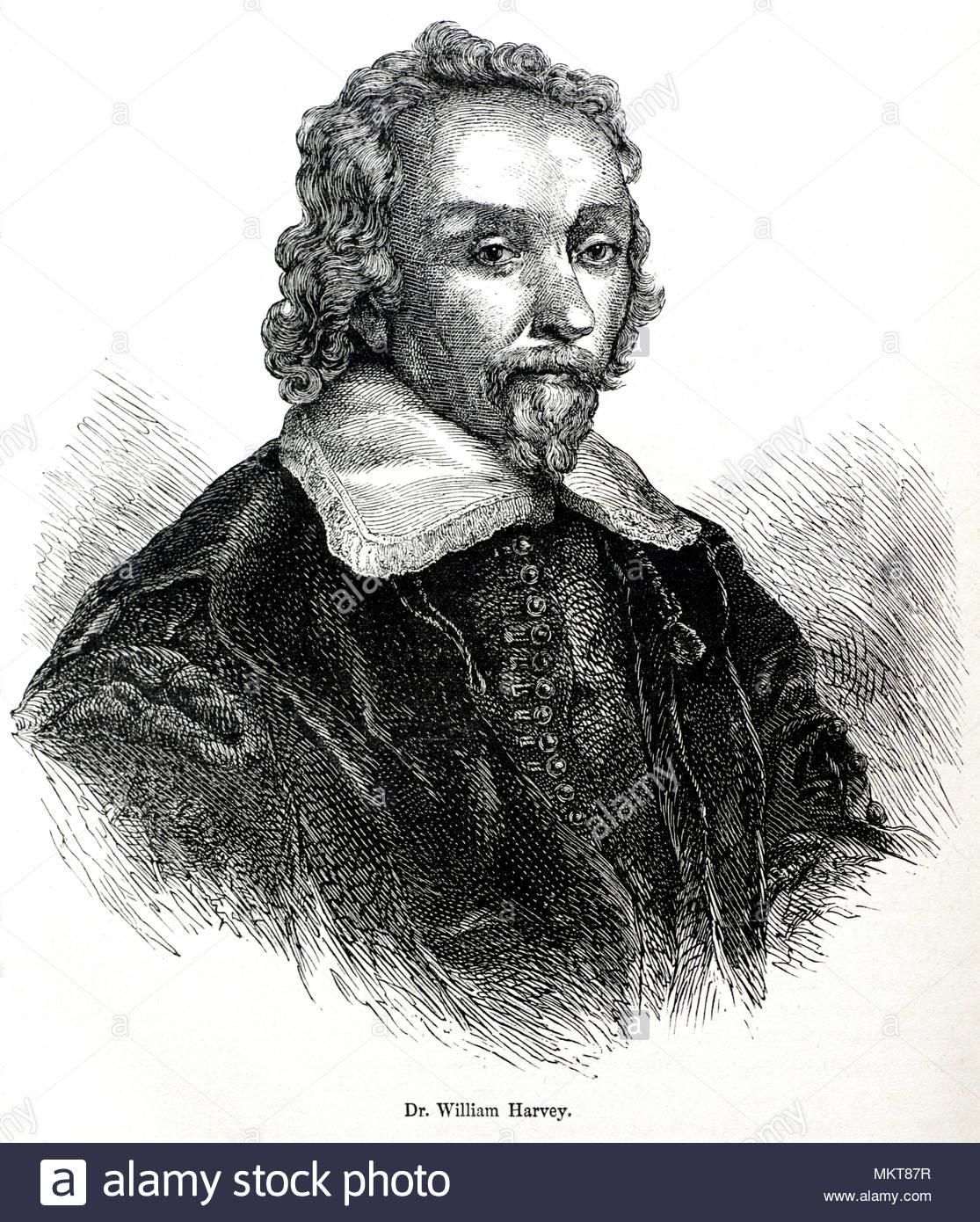 Le Dr William Harvey portrait, 1578 - 1657, était un médecin anglais qui a fait des contributions à l'anatomie et de la physiologie, de l'illustration antique vers 1880 Photo Stock
