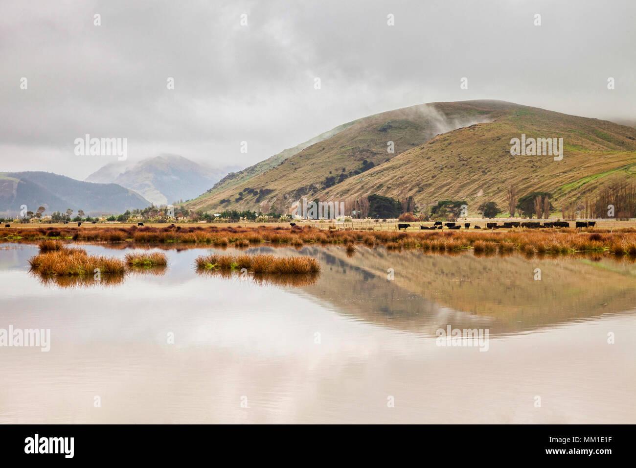 Un matin brumeux sur les fermes, les lacs et les collines de Canterbury, Nouvelle-Zélande. Photo Stock