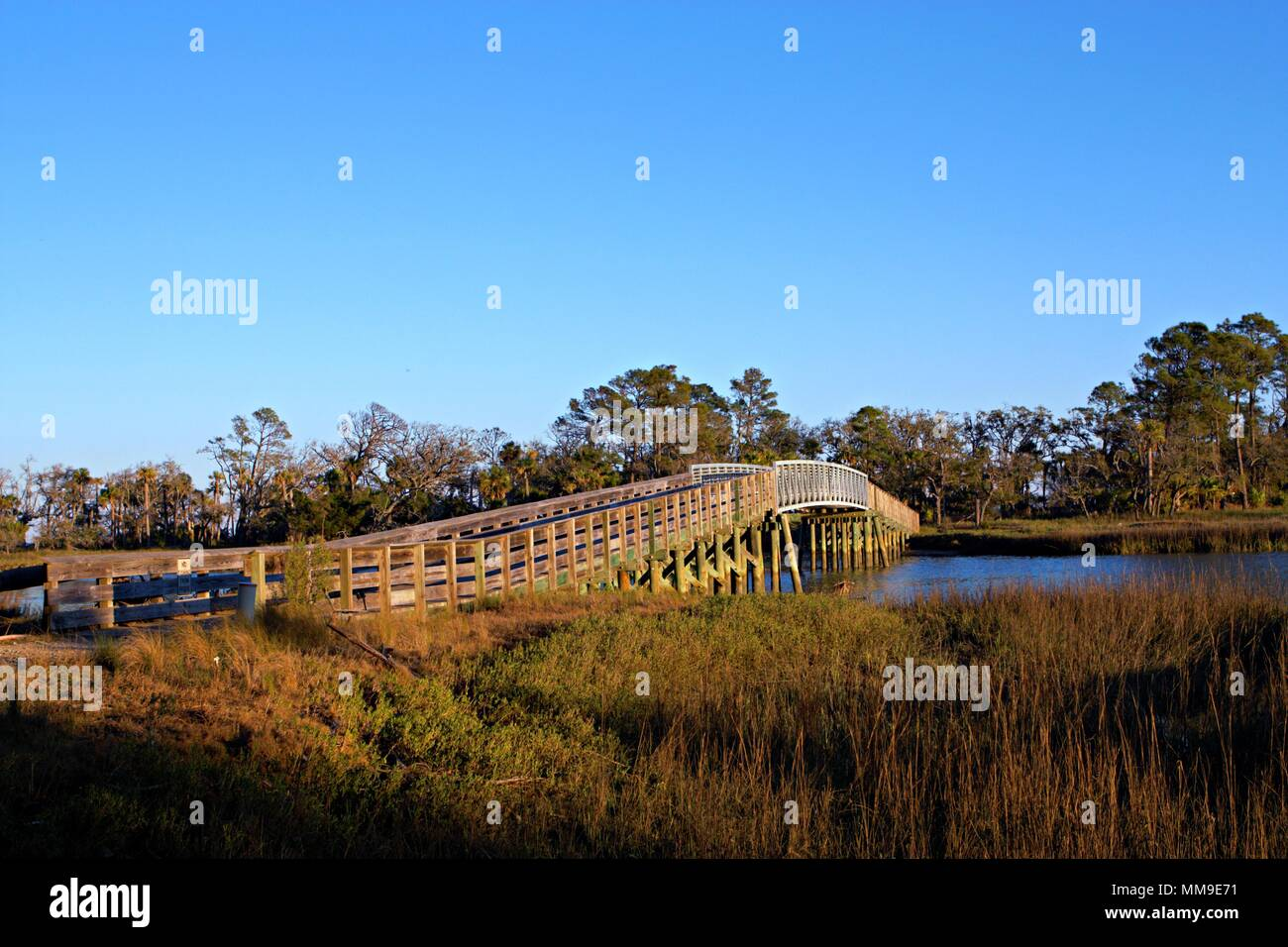 Pont à pied dans la nature park sur Fripp Island Photo Stock