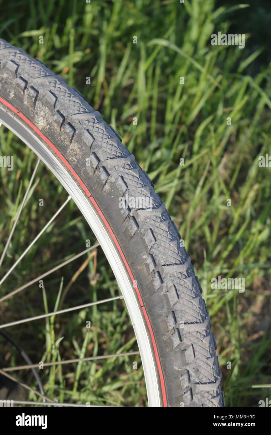 Pneu d'un vélo de montagne avec de grands brins d'herbe dans l'arrière-plan Banque D'Images