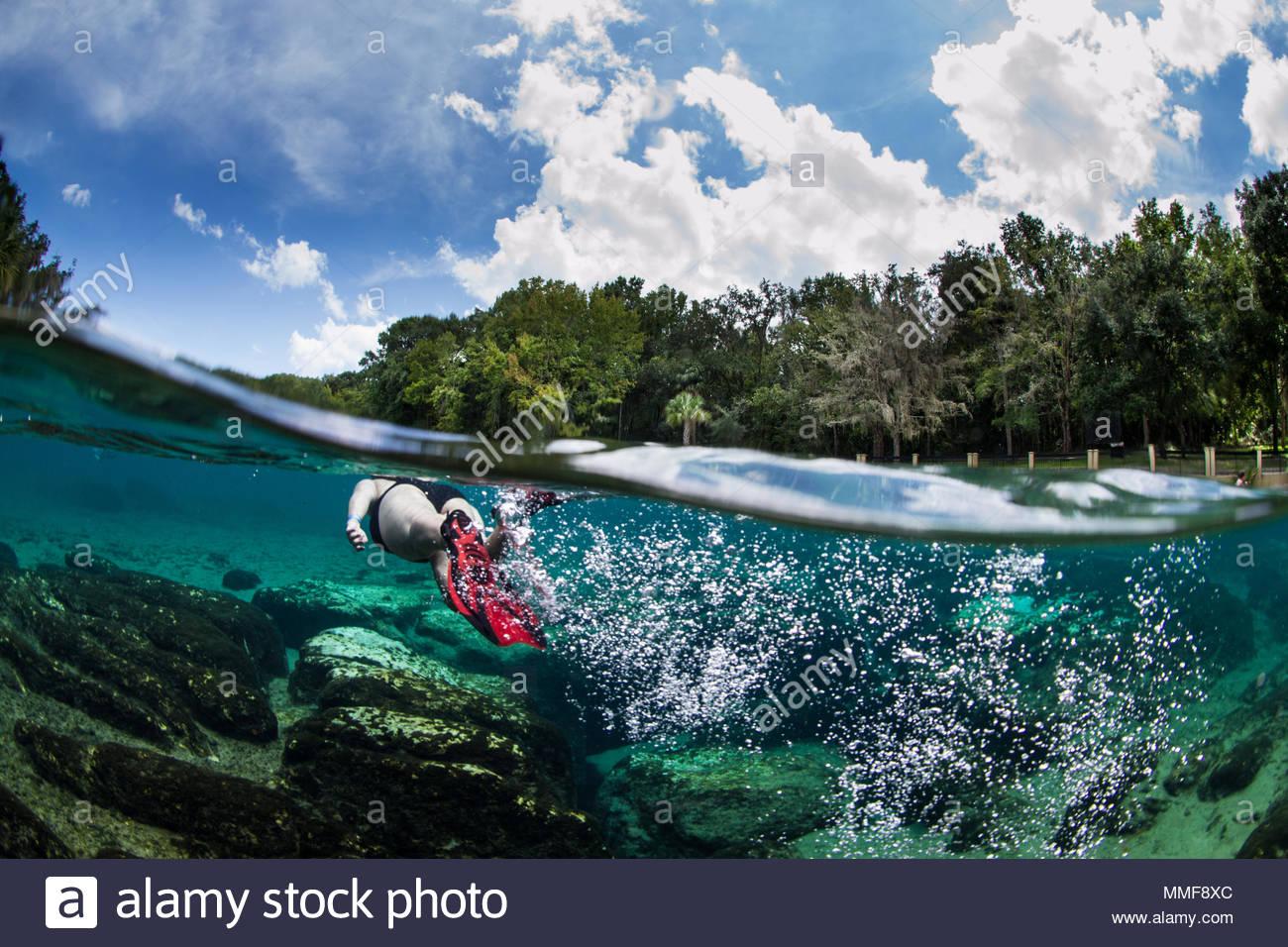 Snorkeler natation en eau douce au printemps. Photo Stock