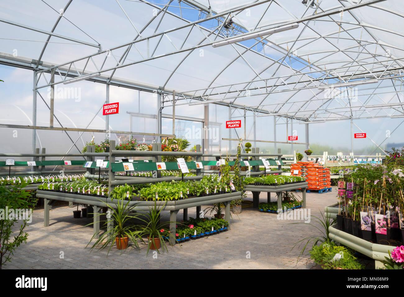 Aperçu d\'un centre de jardin serre avec une variété de ...