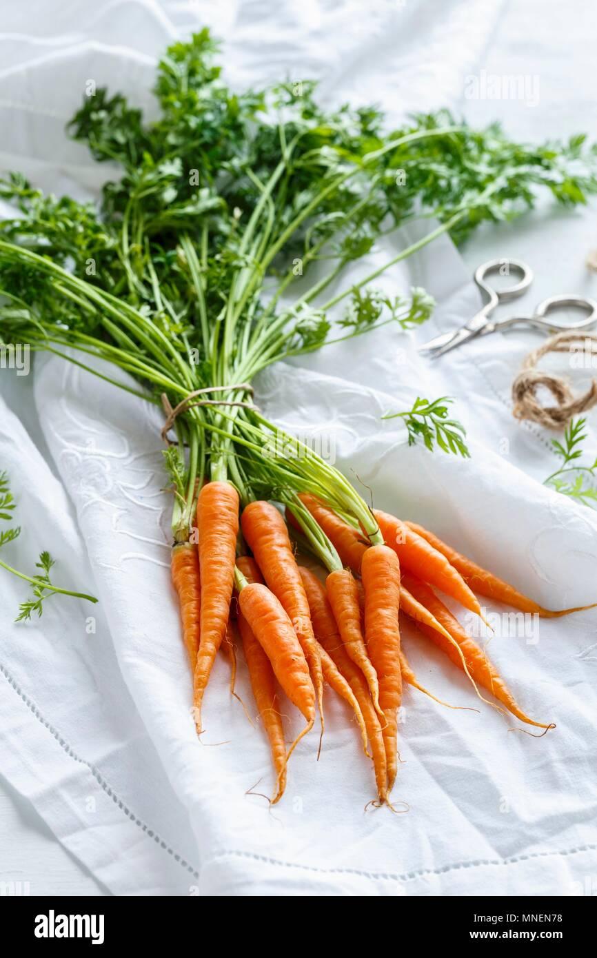 Un tas de carottes avec tops Banque D'Images