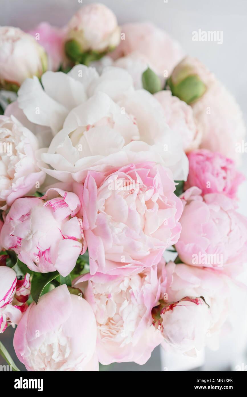 Joli Bouquet De Roses Blanches