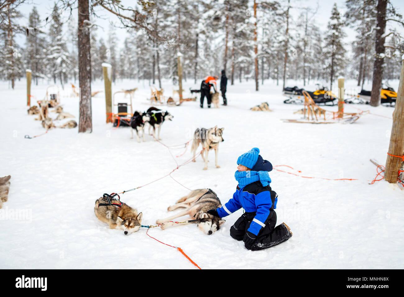Adorable petite fille d'avoir un câlin avec husky chien de traineau en Laponie, Finlande Photo Stock