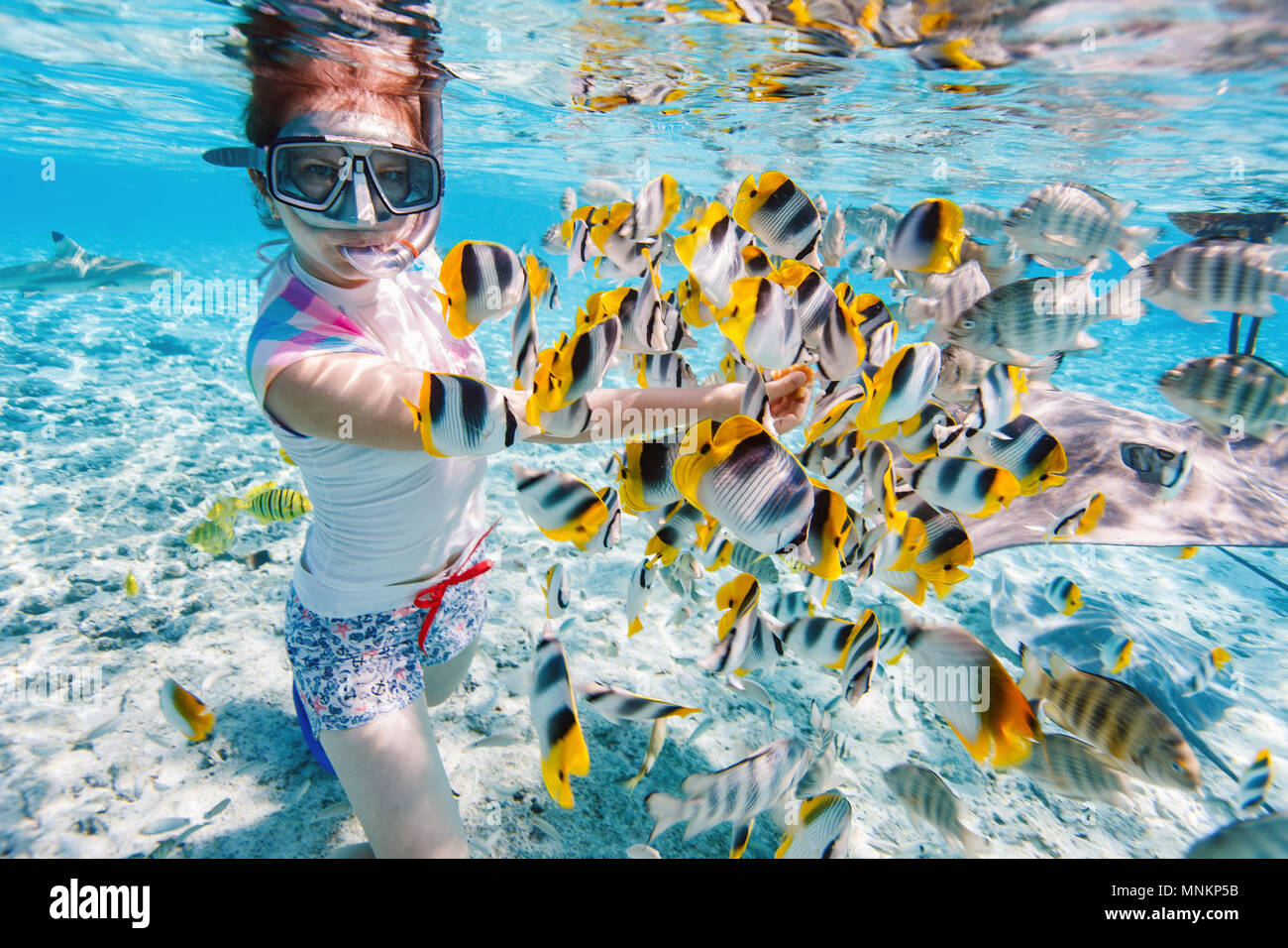 Femme de la plongée libre dans les eaux tropicales claire parmi les poissons colorés Photo Stock