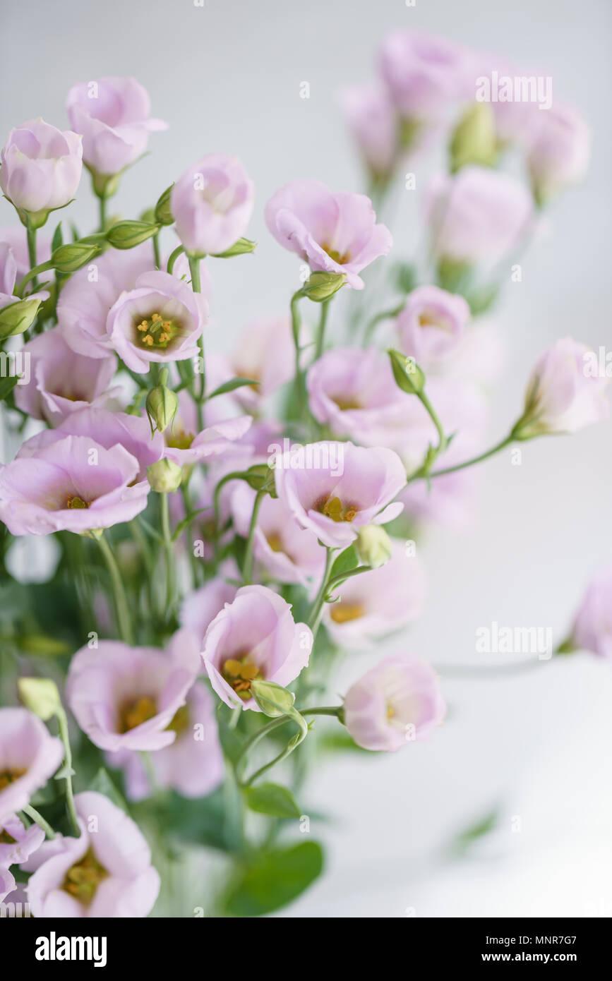 Bouquet De Lilas Eustoma Fleurs Dans Vase En Verre Love Vintage