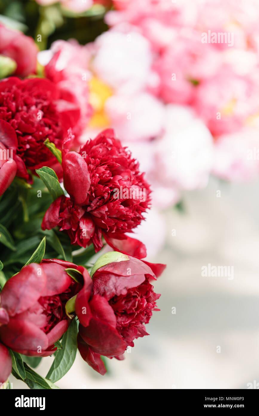 De Jolies Fleurs Dans Vase En Verre Magnifique Bouquet De Pivoines