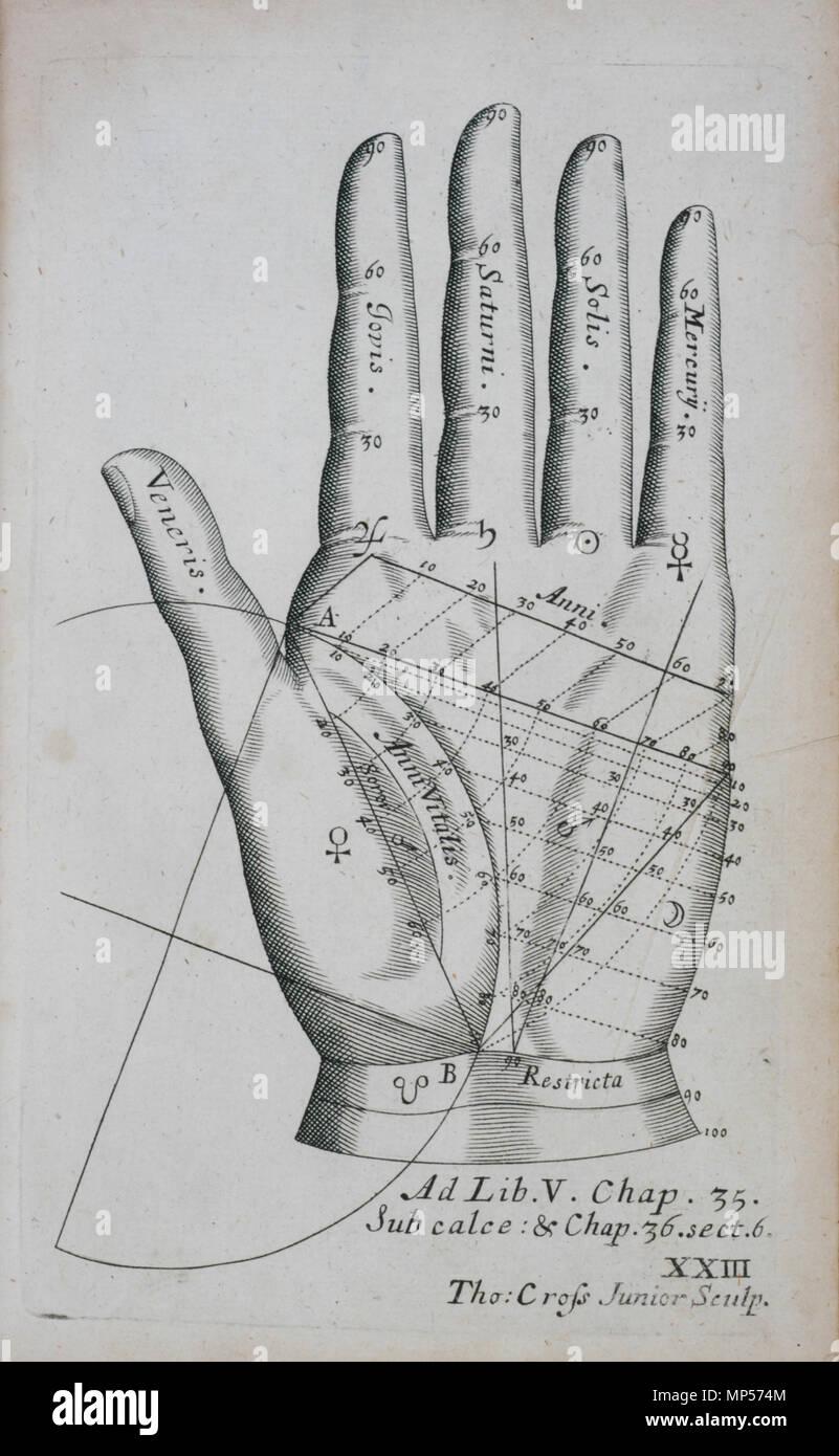 Dessin Representant La Mort xxiii, la plaque de main gauche . anglais : plate xxiii, main gauche