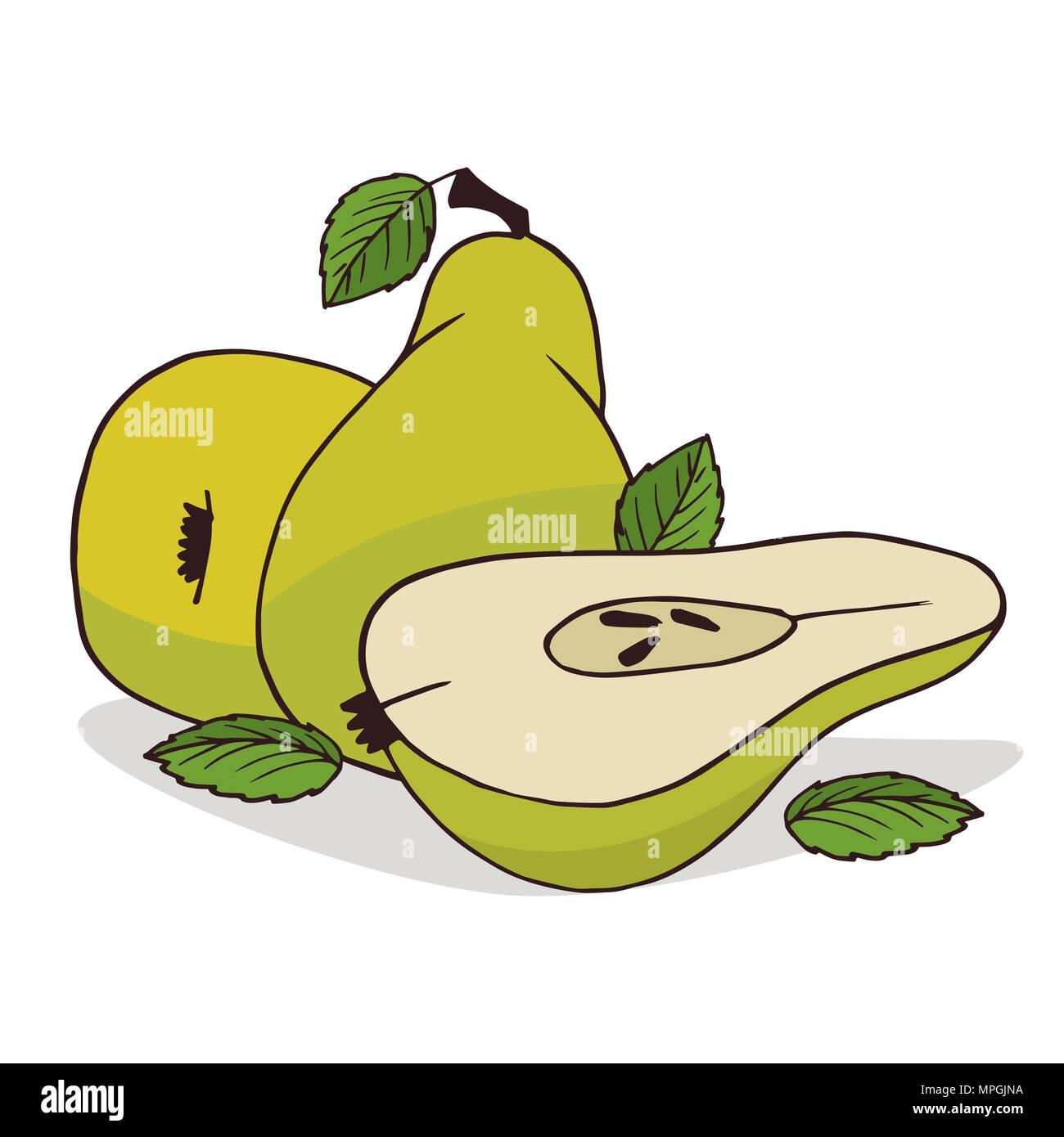 Isoler les fruits poire mûre sur fond blanc. Close up avec ombre clipart dans télévision cartoon style réaliste. L'icône de la main Photo Stock