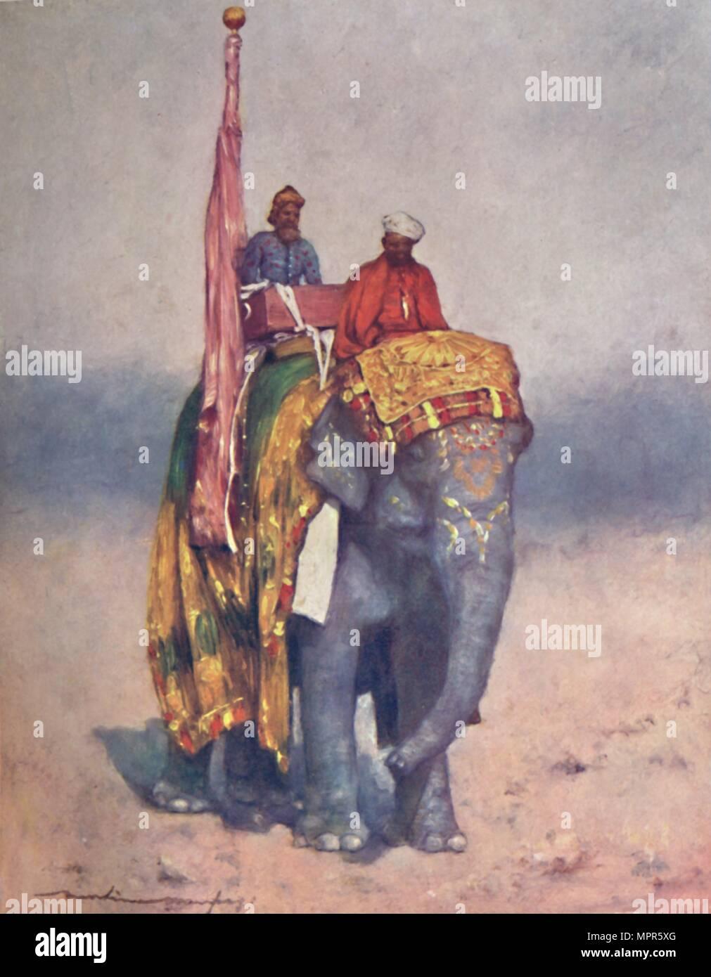 Un éléphant de la plage de sable de déchets dangereux de Rajputana , 1903   04843cb385d5