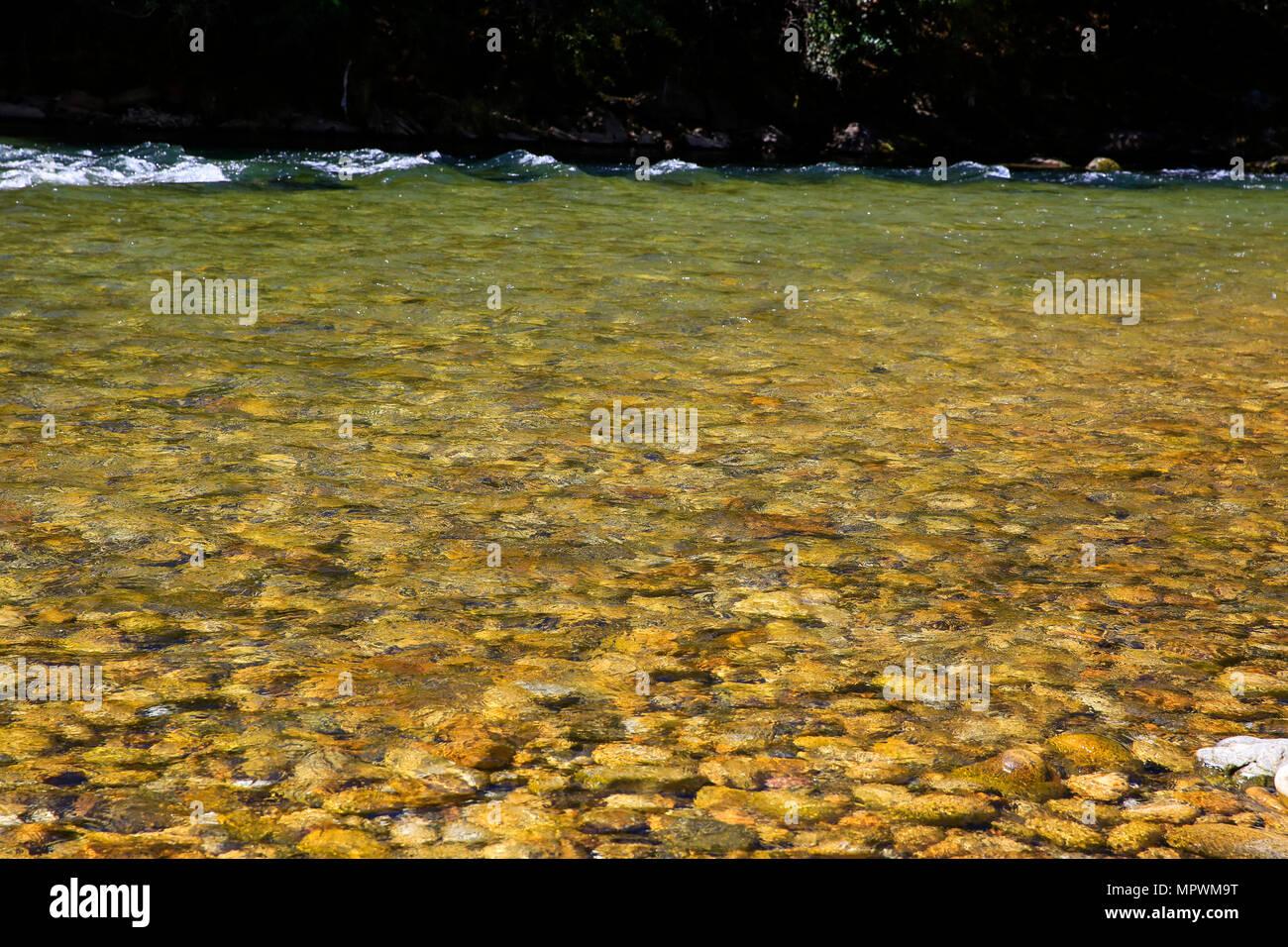 Cristal de l'eau claire de la rivière paro paro Chhu. Paro, Bhoutan Photo Stock