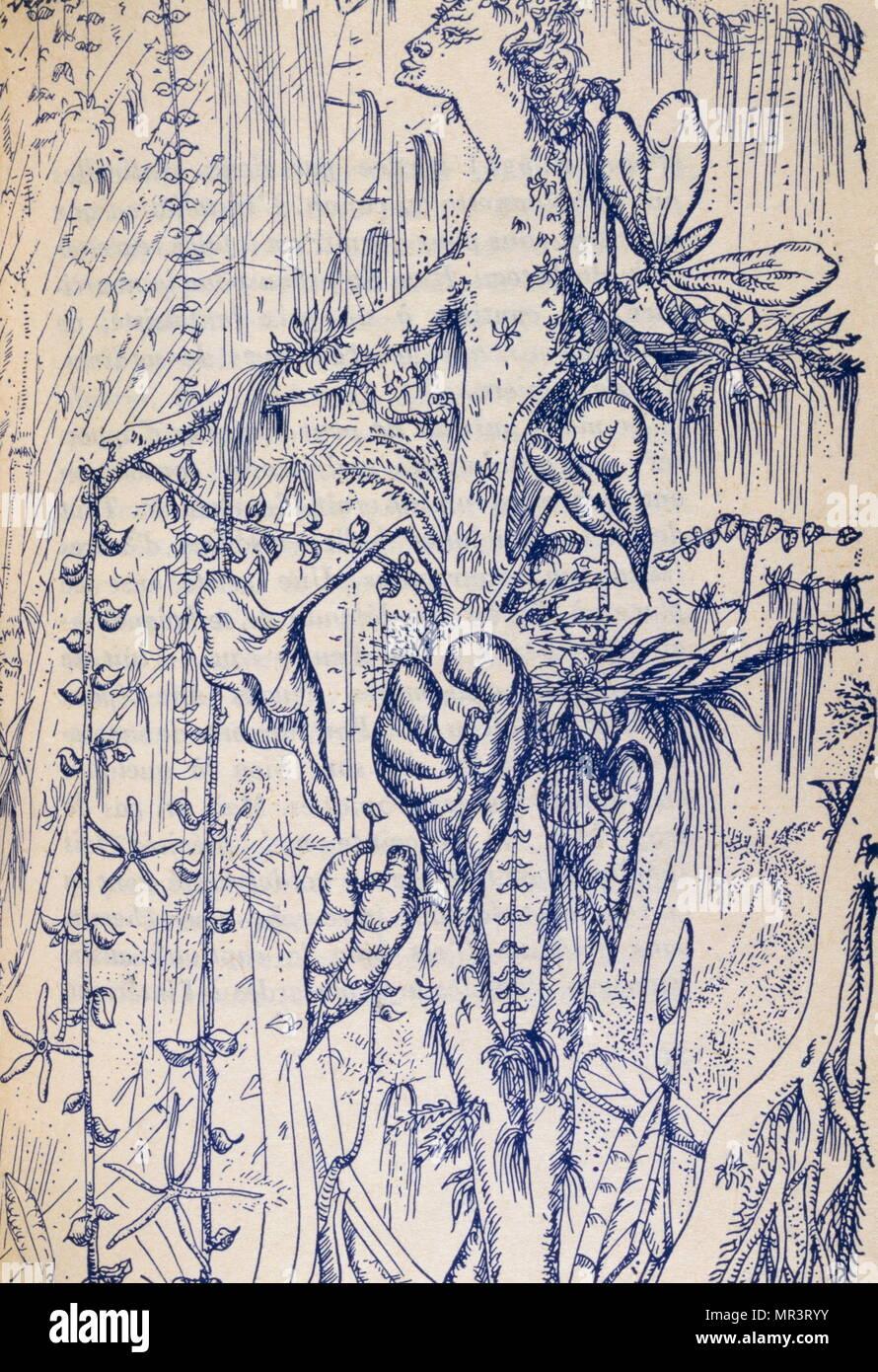 Illustration De Martinique Charmeur De Serpent