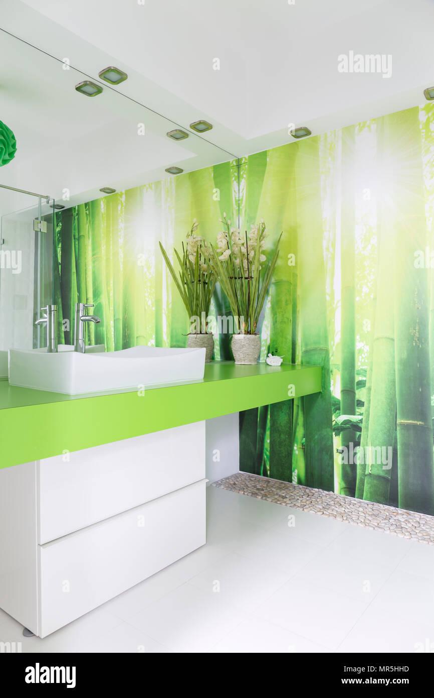 Vert et blanc, salle de bains avec lavabo de comptoir et ...