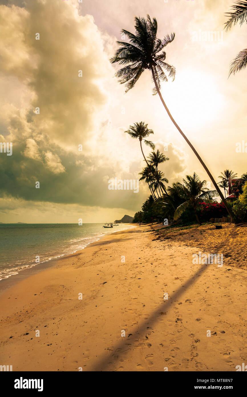 Matin sur la plage de Bang Po. L'île de Samui. La Thaïlande. Photo Stock