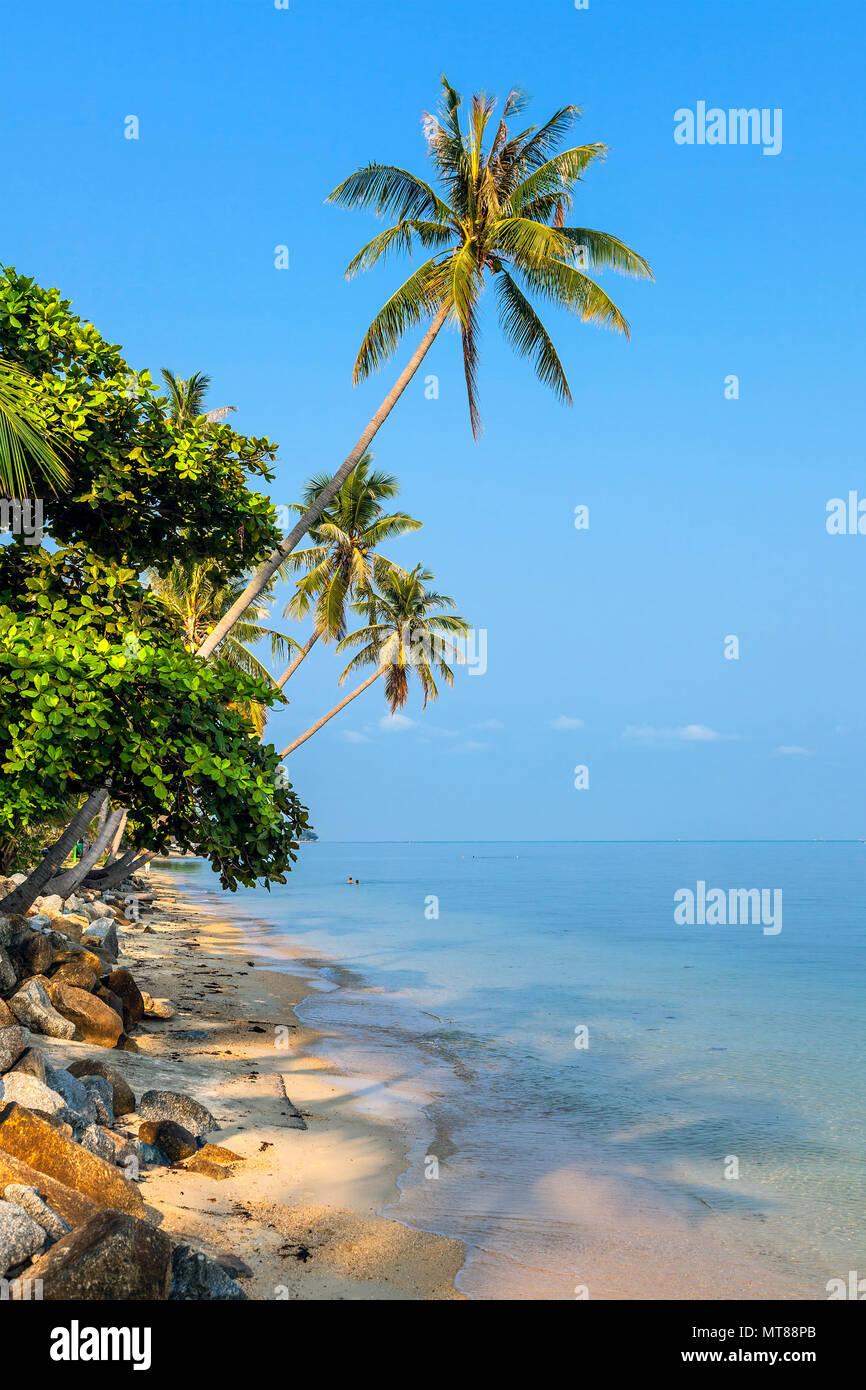 Matin sur l'île de Koh Samui Banque D'Images