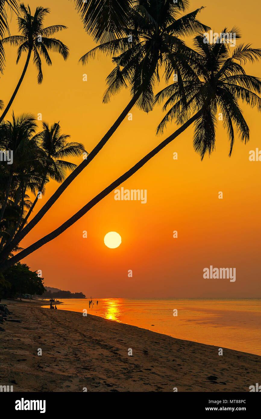 Coucher du soleil sur la plage de Bang Por sur Koh Samui en Thailande Banque D'Images