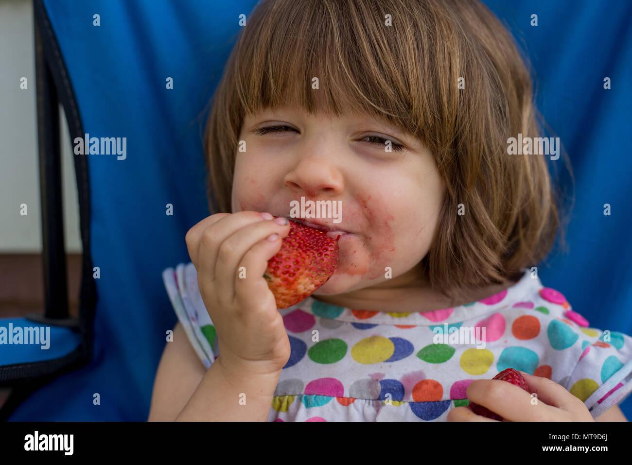 Un enfant de 3 ans mange une fraise. Photo Stock