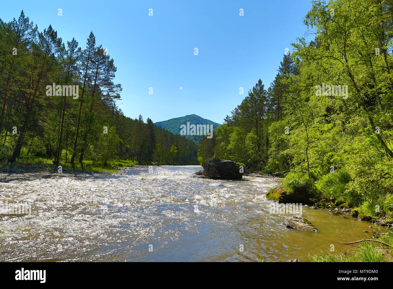 Rivière de montagne paysage Sema dans l'Altaï Banque D'Images