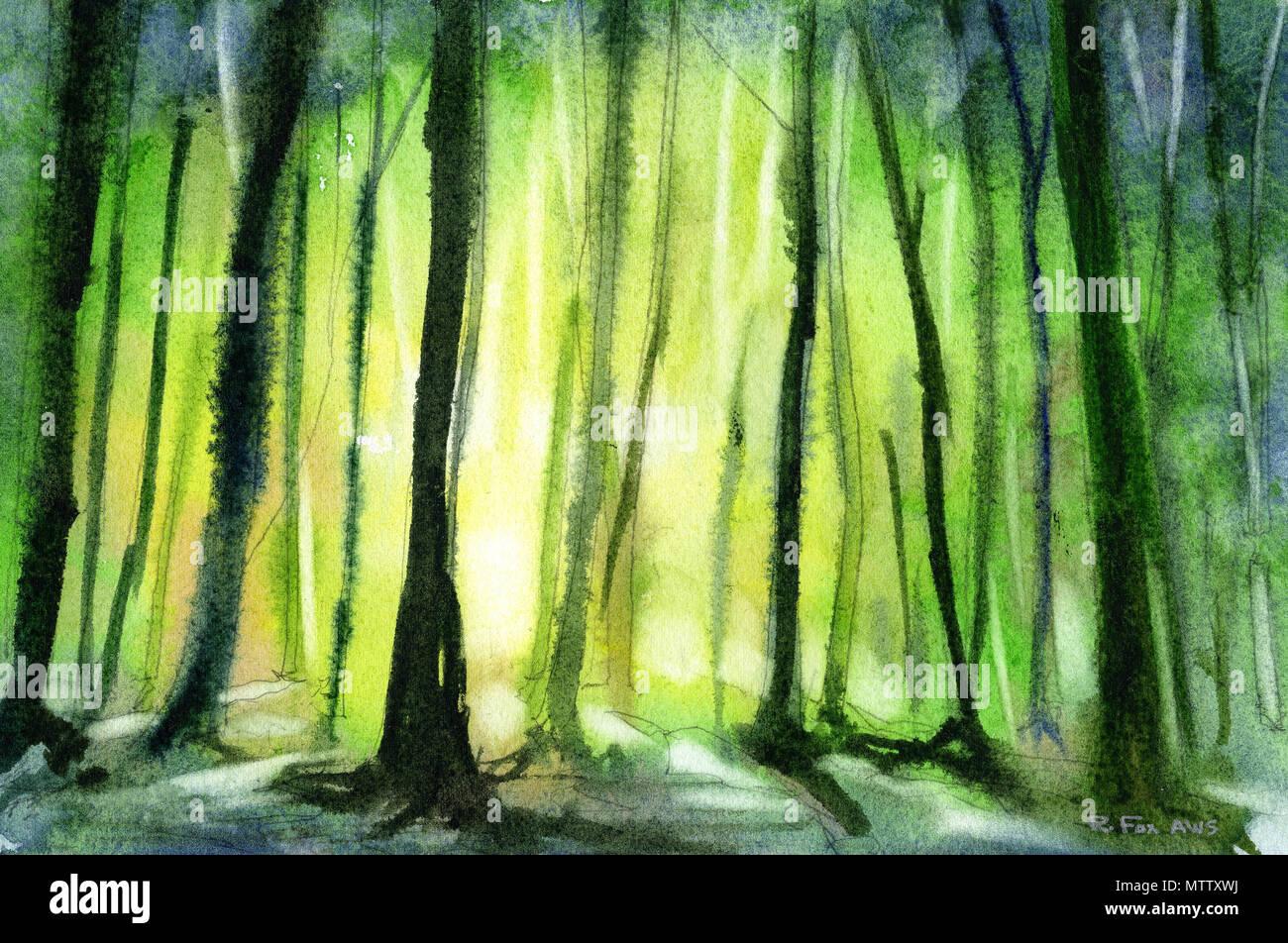 La Silhouette Des Arbres En Forêt Au Coucher Du Soleil Laquarelle