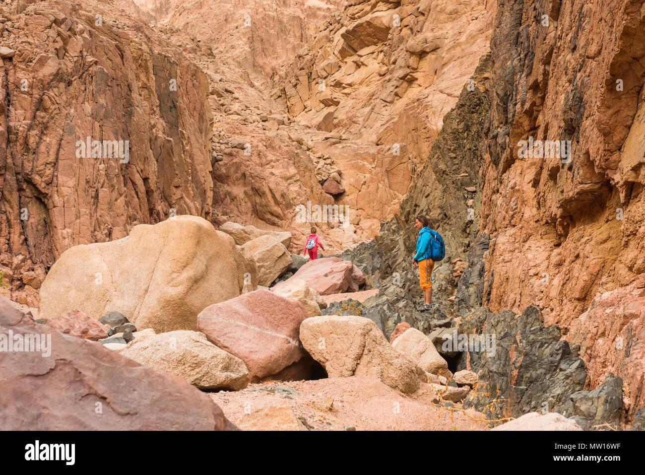 Femme Hiker with backpack profitez d'afficher dans le désert Photo Stock