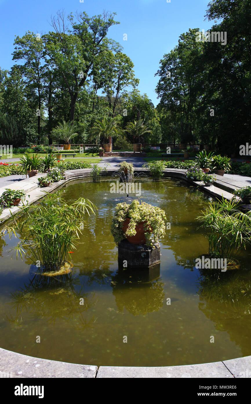 Bassin avec jet d\'eau, poissons et plantes aquatiques en jardin d ...