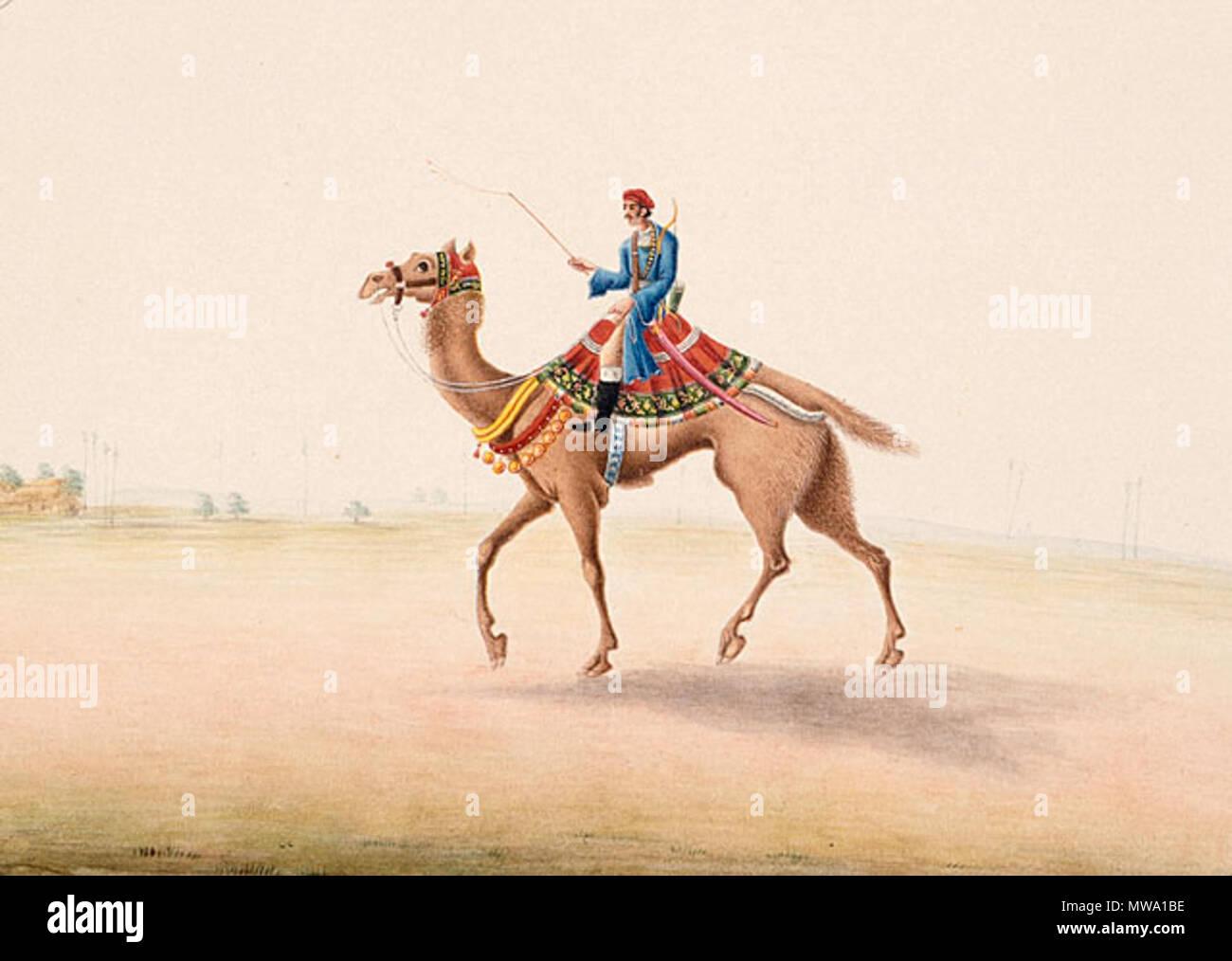 Papier Gaufré À Peindre anglais : l'inde, le bihar, patna, camel rider en asie du