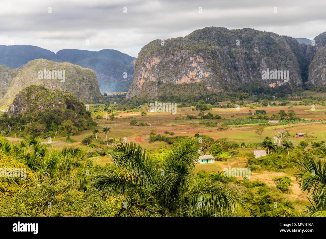 Vue de paysage de Vinales à Cuba. Photo Stock