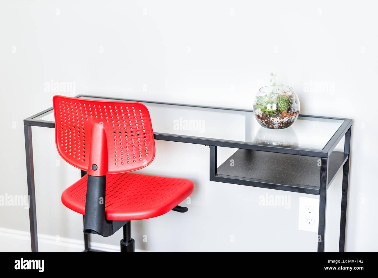 Plante de terrarium vert en petits pots de verre sur table en scène