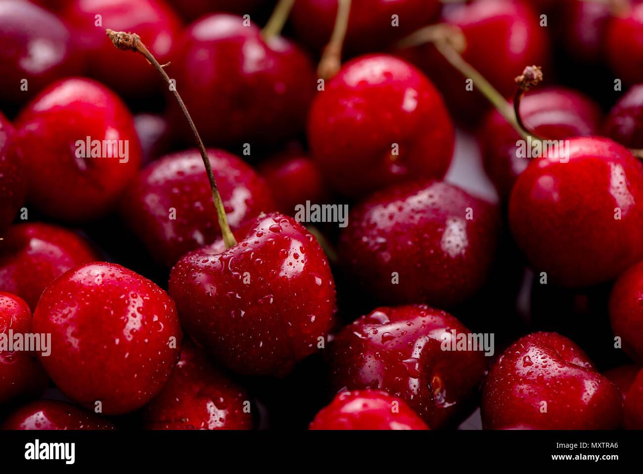 Cerises avec les gouttes d'eau en-tête. Les baies macro shot with copy space Photo Stock