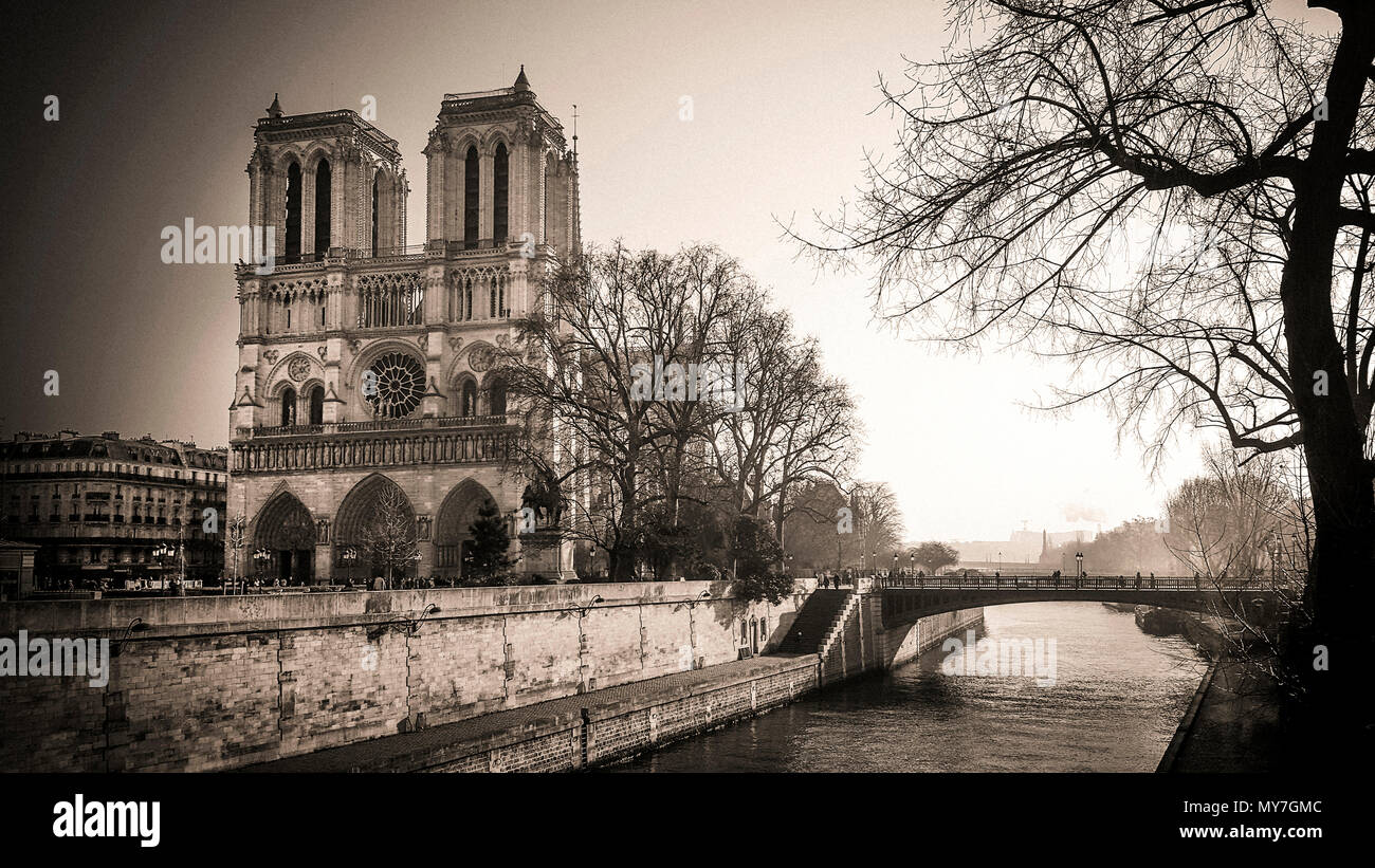 Notre Dame de Paris et de la Seine, Ile de France, Paris, France Photo Stock