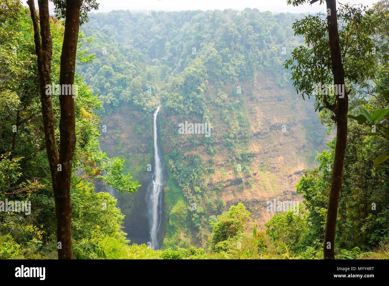 Cascade à partir de la ligne de streaming haute montagne au Laos Banque D'Images