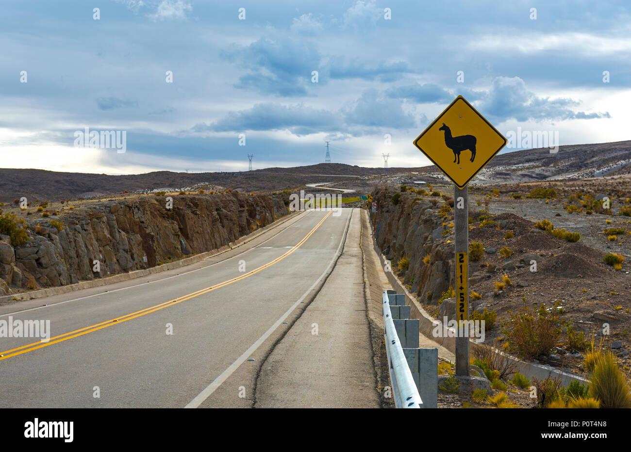 Lamas et alpagas sur le signe de route sur une autoroute à distance en Bolivie. Ces signes se trouvent dans la gamme de montagne des Andes de Bolivie, Équateur, Pérou, Chili. Photo Stock