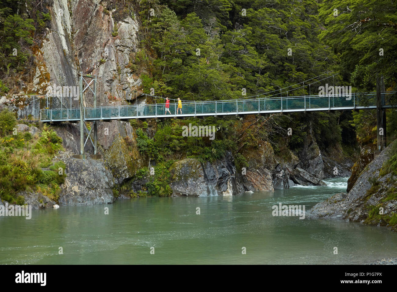 Les touristes en passerelle, rivière bleue, Bleu Piscines, Mount Aspiring National Park, Haast Pass, Makarora, Otago, île du Sud, Nouvelle-Zélande (Modèle 1992) Photo Stock