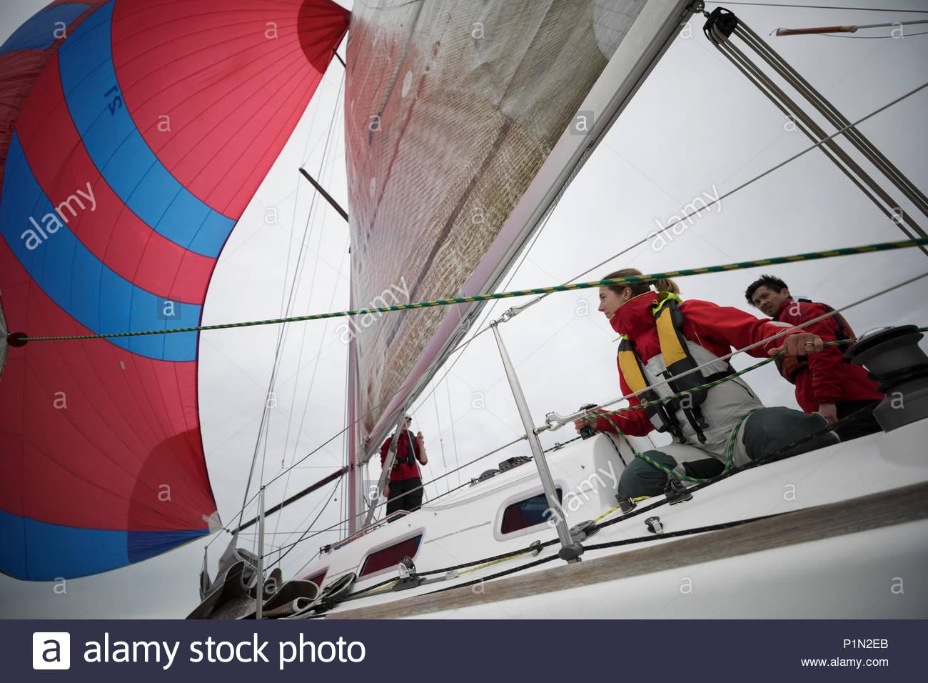 Réglage de l'équipe de voile sail on sailboat Photo Stock