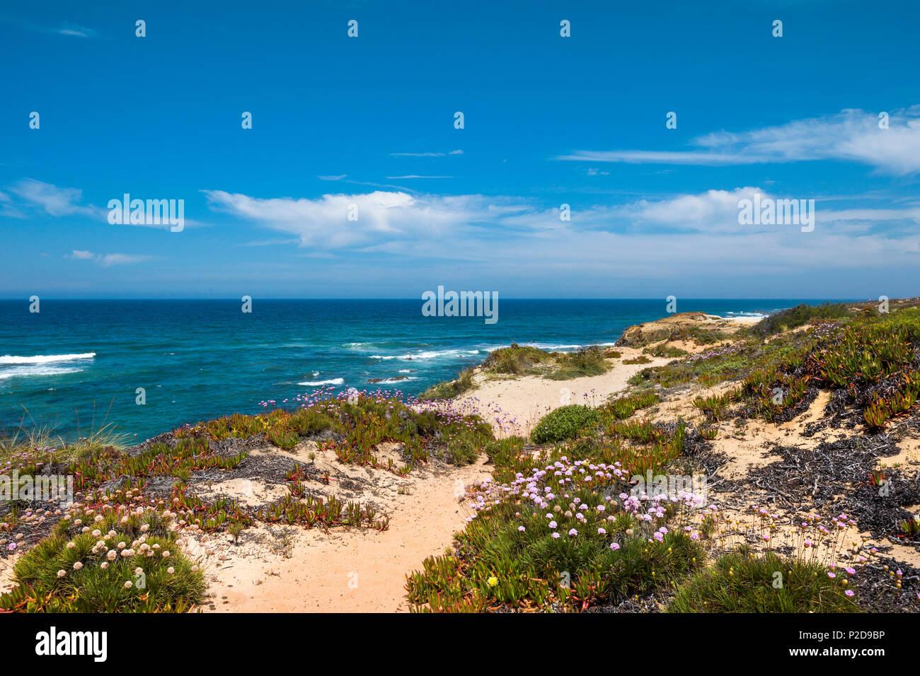 Littoral, Almograve, Costa Vicentina, Alentejo, Portugal Photo Stock
