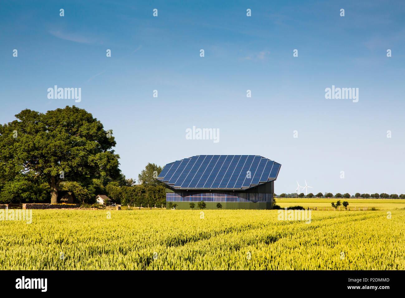 Des panneaux solaires sur un toit stable, côte de la mer Baltique, Schleswig-Holstein, Allemagne Photo Stock