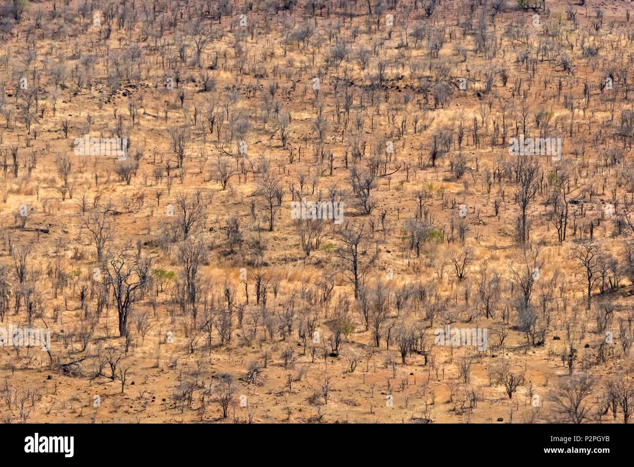 Vue aérienne de la terre sèche, Victoria Falls, Zimbabwe Photo Stock