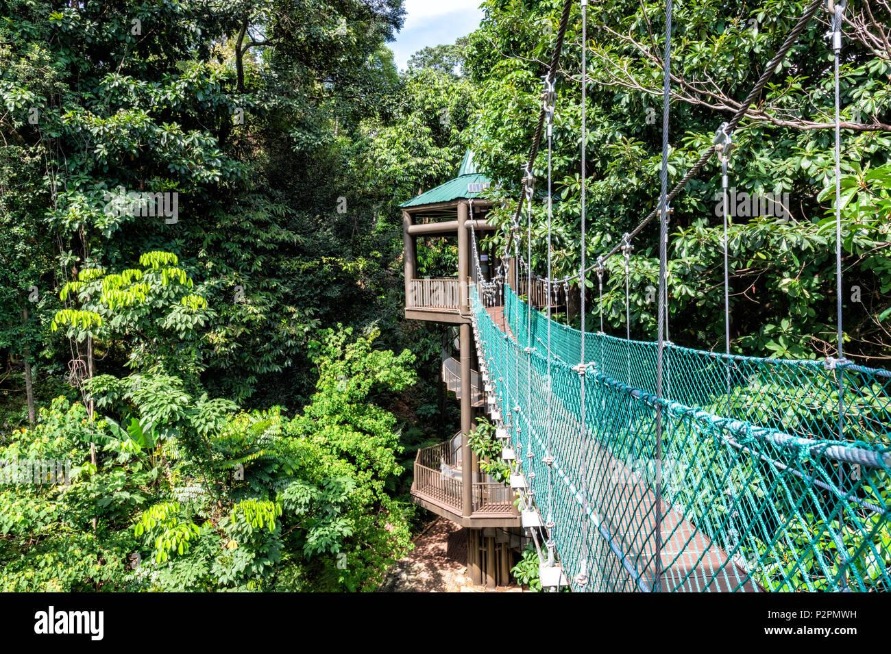 La Foret Kl Eco Park Canopy Walk A Kuala Lumpur Malaisie Banque D