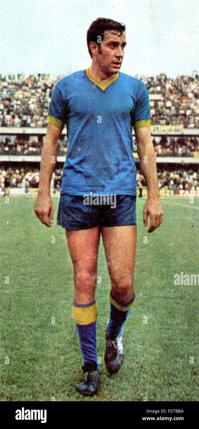 . Italiano: Il calciatore italiano Roberto Mazzanti al Verona all'inizio della stagione 1970-71, sul campo dello stadio Marcantonio Bentegodi di Verona. vers 1970. Inconnu 76 Roberto Mazzanti - AC Hellas Verona 1970-1971 Banque D'Images