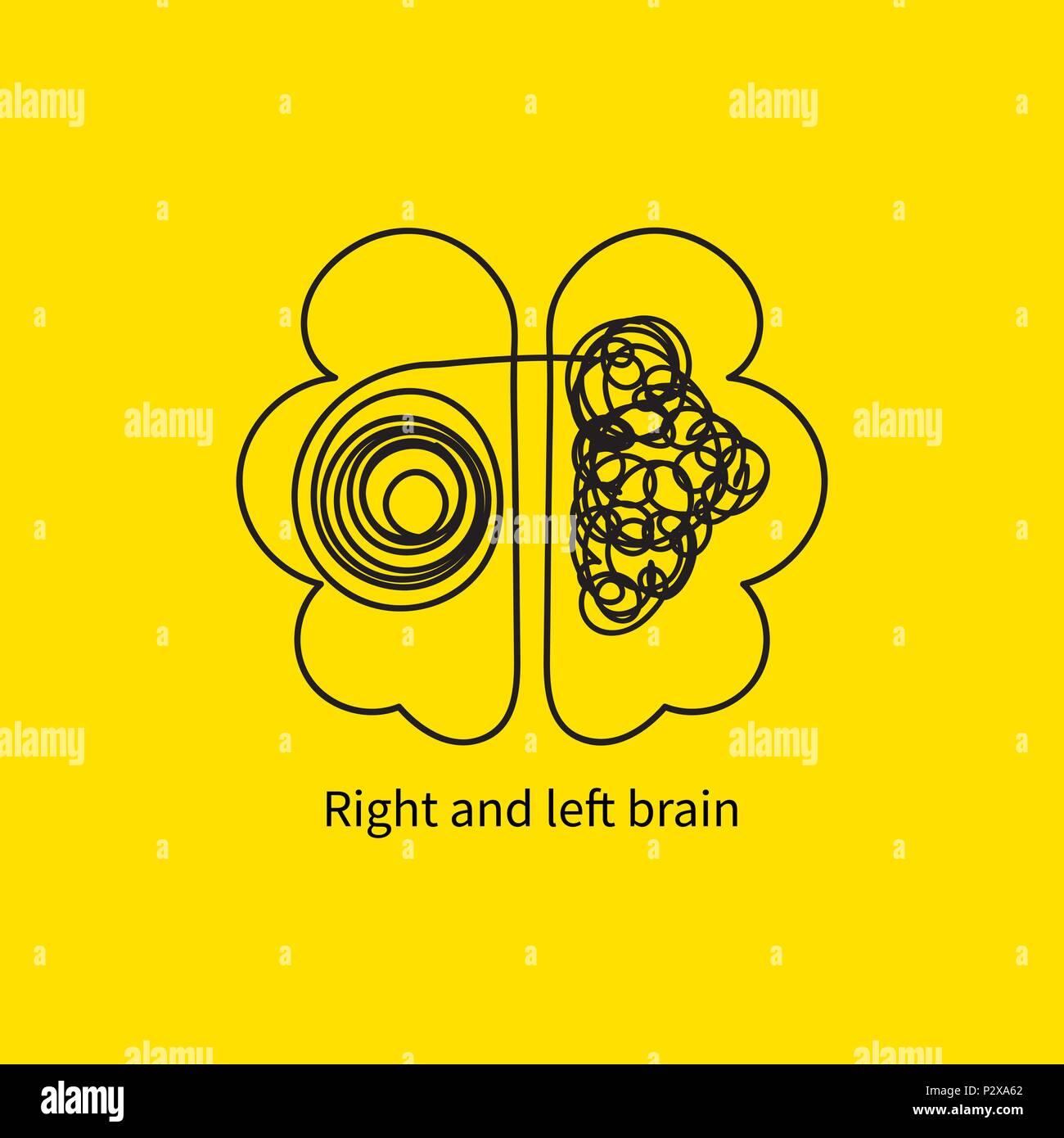 Cerveau gauche et droit Photo Stock