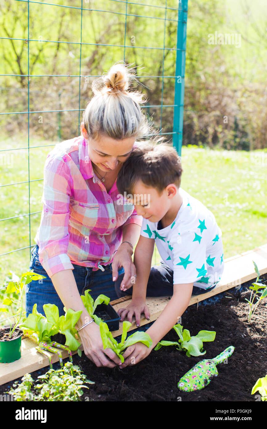 Belle mère et de son fils blonde salade de plantation en double dans son jardin Photo Stock