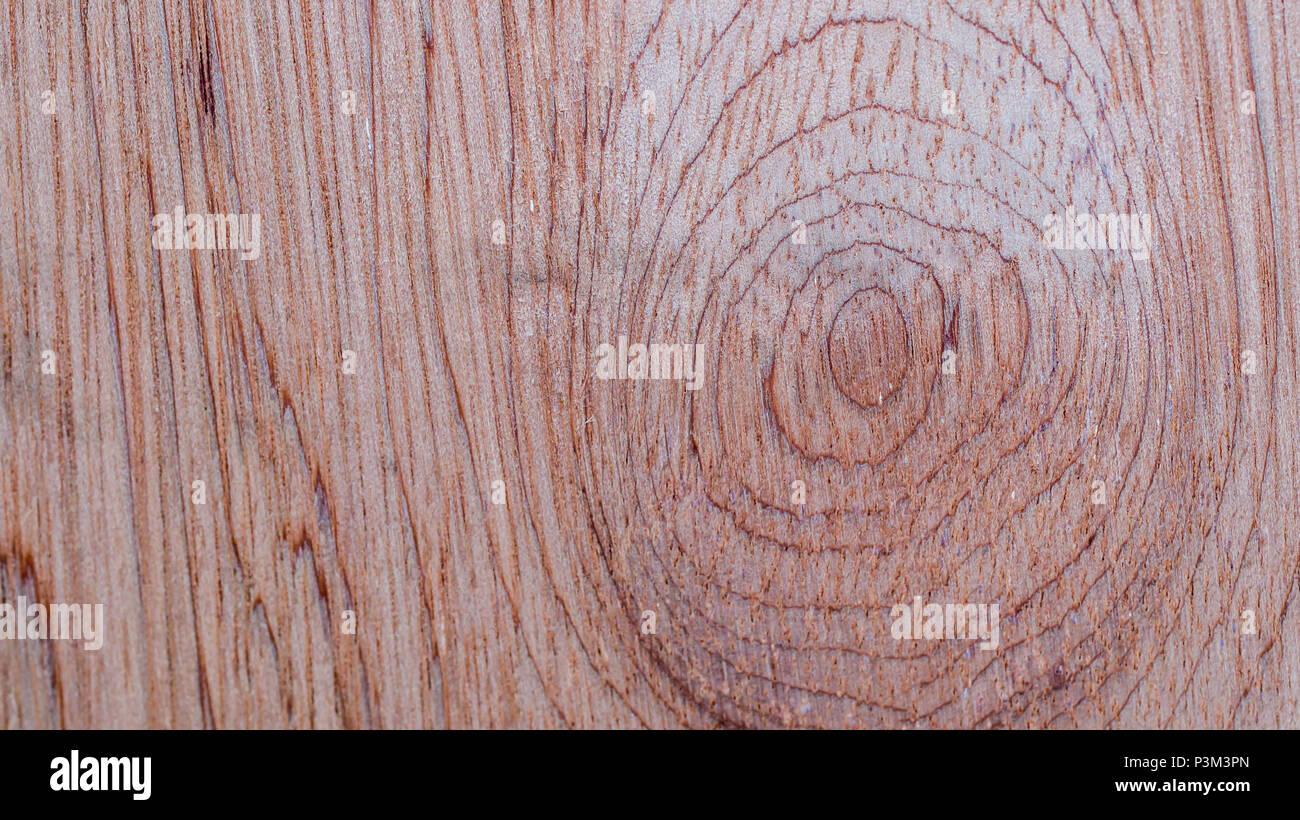 Seamless Texture Bois Brun Clair Naturel Texture Background Abstrait