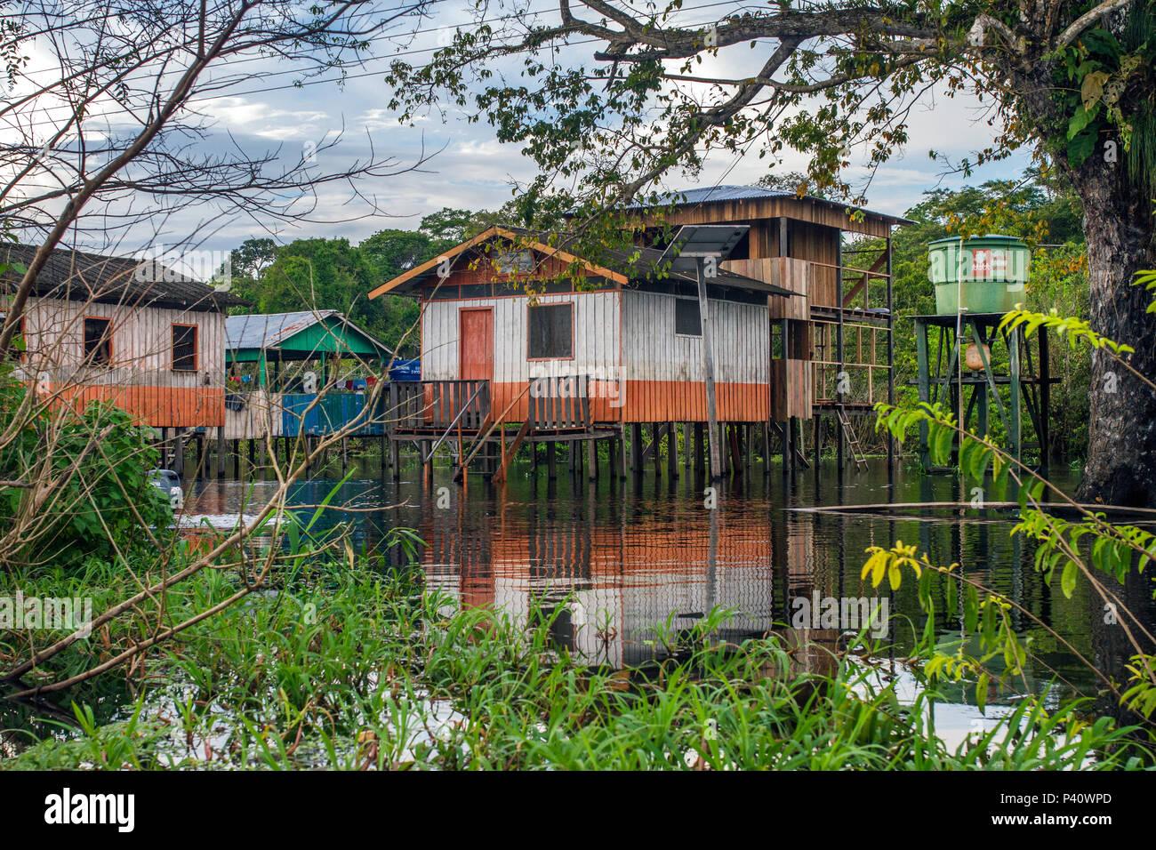 Uarini Amazonas fonte: c8.alamy.com