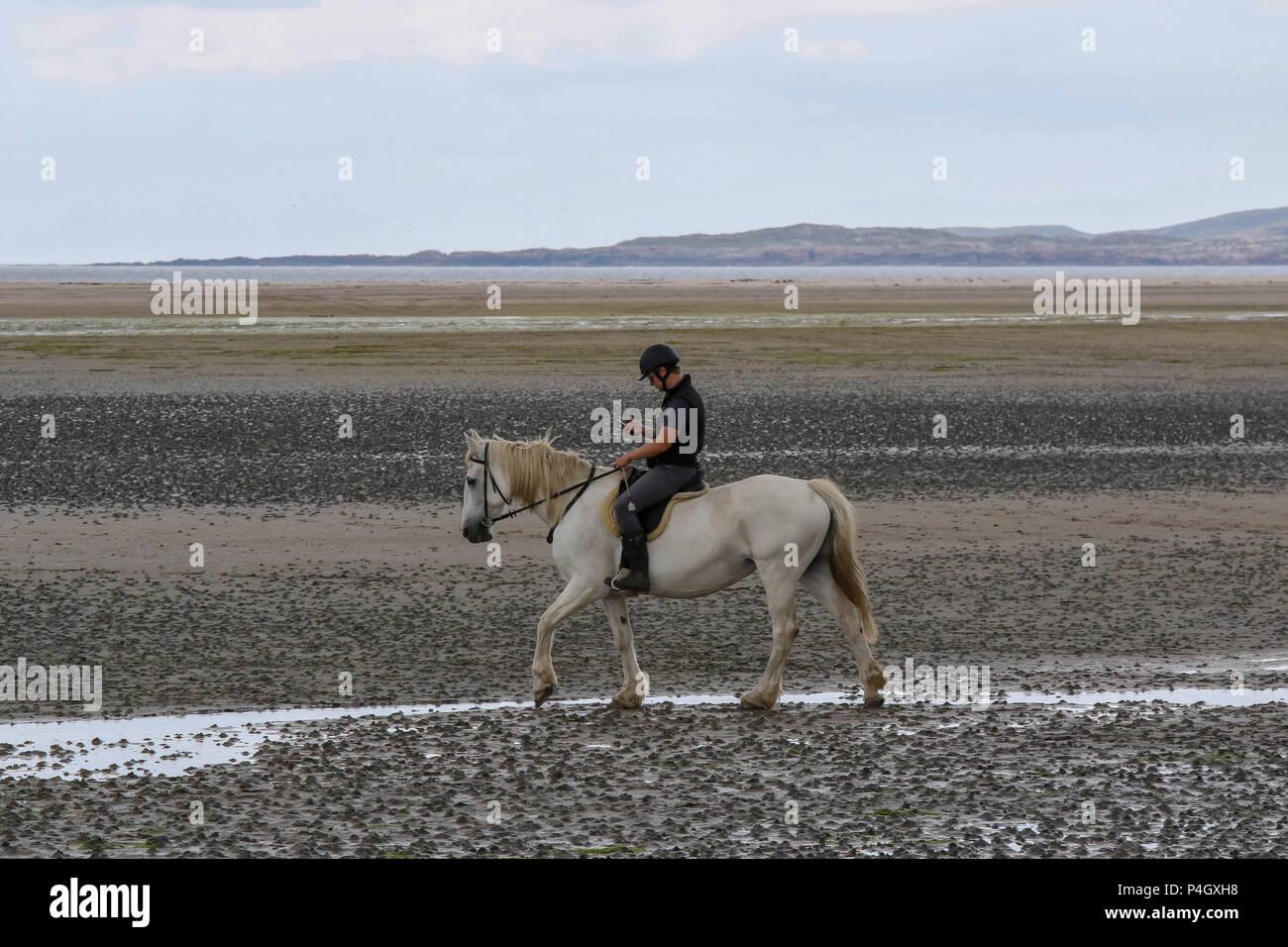 Personne montant un cheval et l'aide d'un téléphone mobile au comté de Donegal Irlande Dunfanaghy Photo Stock