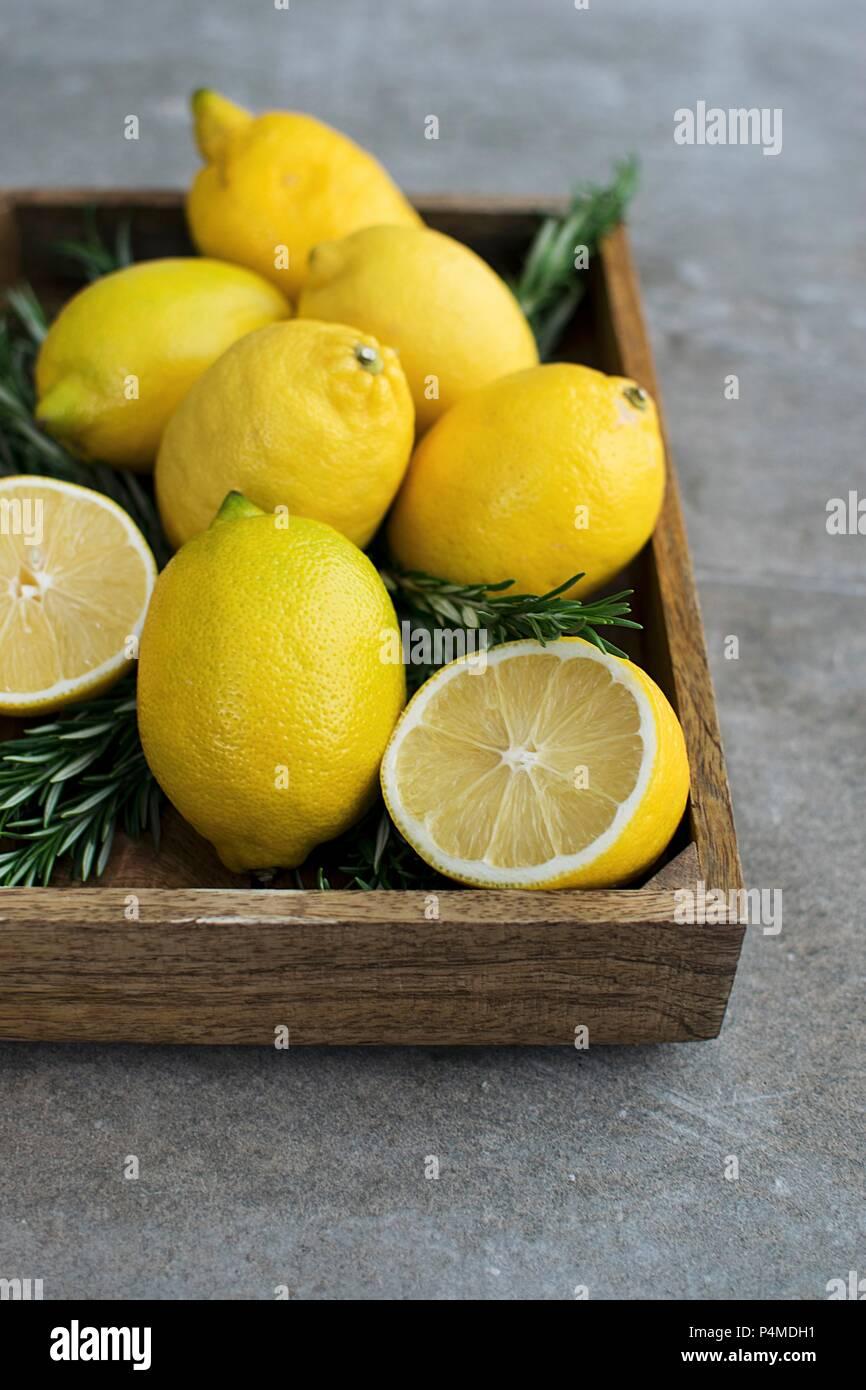 Romarin citron Nature Morte Photo Stock