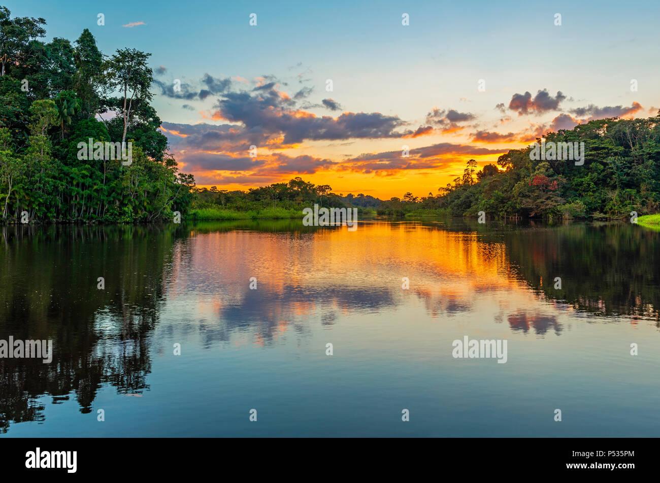 Réflexion d'un coucher du soleil dans le bassin de la forêt amazonienne. Les pays du Brésil, Bolivie, Colombie, Équateur, Pérou, Venezuela, Guyana et Suriname. Photo Stock